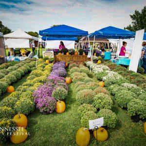 tennessee-honey-festival-fall-festival