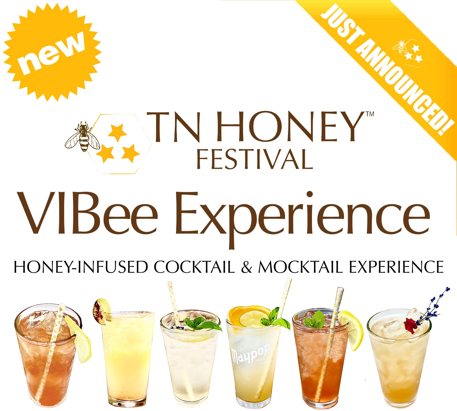 The VIBee Experience